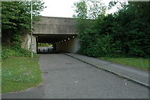 SJ6491 : Lowes Farm Subway, Birchwood, Warrington. by andy