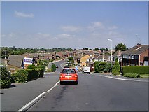 SX9592 : Exeter suburb by Richard Knights