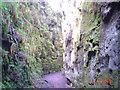 SJ9865 : Green Knight's Temple by Steve Partridge