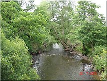 SJ0770 : River Clwyd by Dot Potter