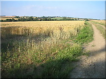 TL7951 : Bury to Clare walk at Thurston by Ian Mitchell