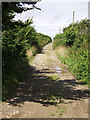 SW7650 : Green lane from Callestock Veor to Pendown by Sheila Russell