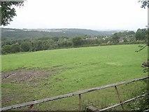 SX4271 : Farmland above Gunnislake village by Tony Atkin