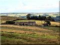 SE1444 : Carr Bottom Farm, near Burley Woodhead by David Spencer