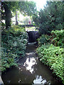 TQ3768 : Kelsey Park, Beckenham - weir at north end of lake by Philip Talmage
