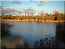 TQ5581 : Kennington Park Lake by Glyn Baker
