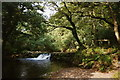 SX3564 : St Mellion: Pillaton Mill Weir by Martin Bodman