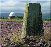 SE1013 : Triangulation Post & Observatory by Ian M
