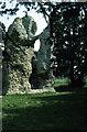 TL7789 : Weeting Castle by Stephen McKay