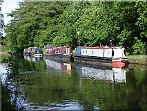 SJ6486 : Narrow boats on the Bridgewater Canal by Ian Cunliffe