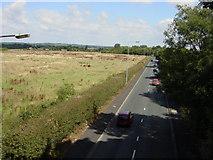 SJ4386 : Lydiate Lane from Transpennine trail by Sue Adair