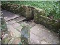 SE2406 : Gunthwaite Spa by Humphrey Bolton