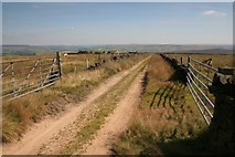 SD9428 : Bridleway, Moorcock Road by Mark Anderson