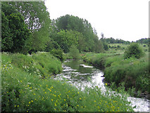 SP0393 : River Tame by Bill Payer
