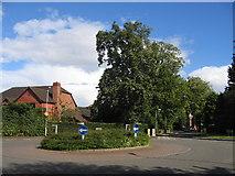 SP1775 : Knowle Grove, Dorridge by David Stowell