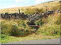 SE0944 : Roadside spring, High Bradup, Morton Moor by David Spencer