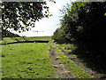 SE0242 : Farm track, Steeton Moor by David Spencer