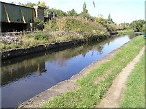 SK3888 : Aqueduct on Sheffield Canal by David Morris