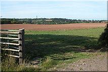 SO6627 : View towards Upton Bishop by Philip Halling
