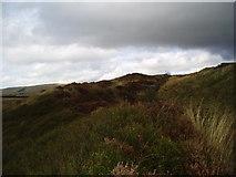 SD8315 : Codshaw Quarry, off A 680, Lancashire by Dr Neil Clifton