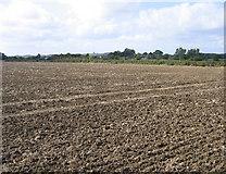 TL0933 : View near Fielden Court, Silsoe, Beds by Rodney Burton