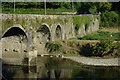 S6139 : Brownsbarn Bridge over the River Nore by Crispin Purdye