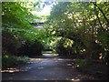 SJ3786 : Railway Bridge, Otterspool Park by Sue Adair