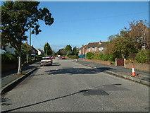SZ1095 : Street Scene, Throop by Stuart Buchan