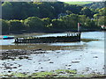 SX5052 : Hulk, Hooe Lake by Gwyn Jones