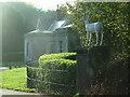 SX5254 : Stag Lodge, Saltram by Gwyn Jones