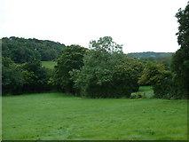 SK3276 : Farmland near Millthorpe by Chris Shaw