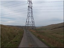 NS2568 : Electricity pylons by william craig