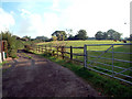 TQ4259 : Track to Brickyard Farm, off Jail Lane, Biggin Hill TN16 by Philip Talmage