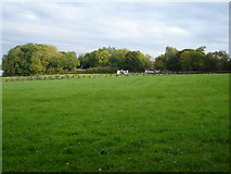 TL0217 : Over the fields towards Buckwood Lane. by Robin Hall