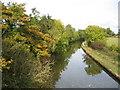 SP1877 : Grand Union Canal near Kixley by David Stowell