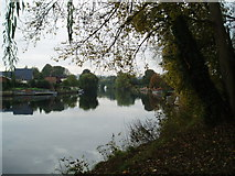 SU9974 : The River Thames, near Old Windsor by Martyn B