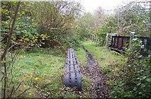 ST1899 : Disused railway bridge, Argoed, Caerphilly by Ralph Rawlinson