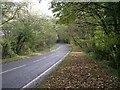 SX3754 : The A374 east of Sheviock by Tony Atkin