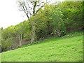 SO2720 : Near Pont Newydd by John Thorn