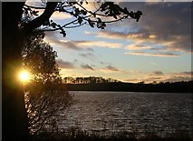 NS6968 : Johnston Loch by Chris Upson
