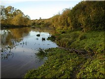 NZ4012 : River Tees by Mick Garratt