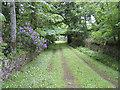 NR3362 : Approach to Old Kilarrow Cemetery by Dixie Cutler