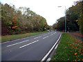TQ4662 : A21 Sevenoaks Road near Pratt's Bottom BR6 by Philip Talmage