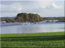 SJ4052 : Flood plain doing what it does best by John Haynes