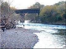 ST1479 : Disused railway bridge near Hailey Park by nantcoly