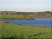 SW4329 : Drift Reservoir by Sheila Russell