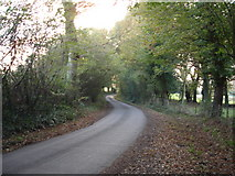 TQ7008 : Coneyburrow Lane Nr Little Common Bexhill-on-Sea East Sussex by Janet Richardson