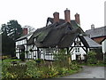 SJ5953 : The Thatch Inn at Faddiley by John Naisbitt
