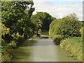 SU2462 : Kennet & Avon Canal seen Westerly from Wolfhall Bridge by Michel Van den Berghe