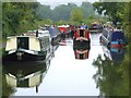 ST7863 : Kennet & Avon Canal South of Milbrook Swing Bridge by Michel Van den Berghe